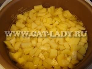 рецепт тушеного картофеля с курицей в мультиварке редмонд