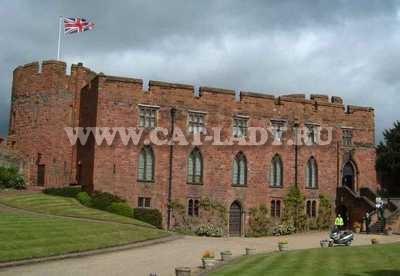 Shrewsbury-Castlea